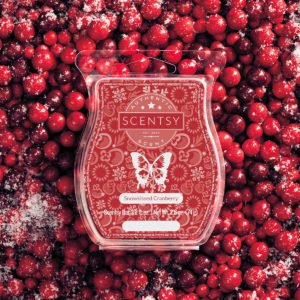 Snowkissed Cranberry Scentsy